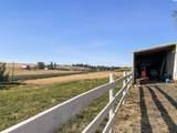 102 Warnecke Road - Photo 6