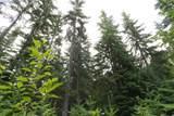 TBD Lodge Creek Land - Photo 8