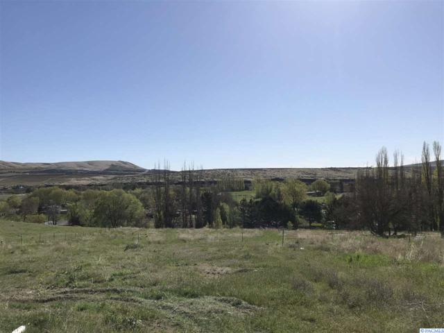 E Corral Creek Rd, Benton City, WA 99320 (MLS #229039) :: The Lalka Group