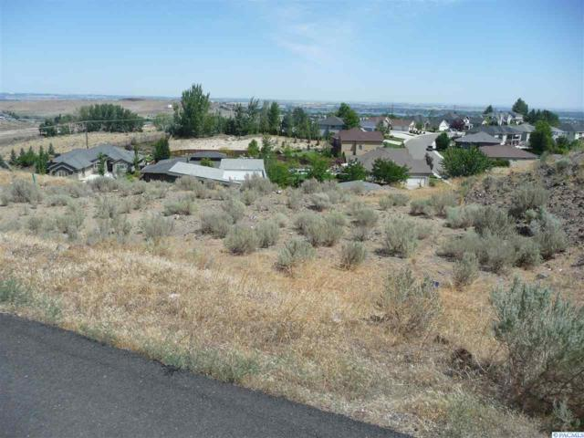 1065 Meadow Hills Drive, Richland, WA 99352 (MLS #229060) :: The Lalka Group