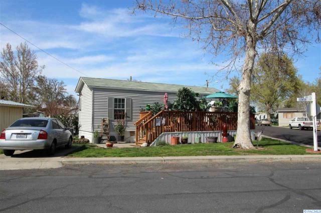 41 Log Lane, Richland, WA 99354 (MLS #229114) :: The Lalka Group