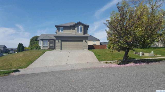 4104 Mojave Ct, Pasco, WA 99301 (MLS #229148) :: The Lalka Group