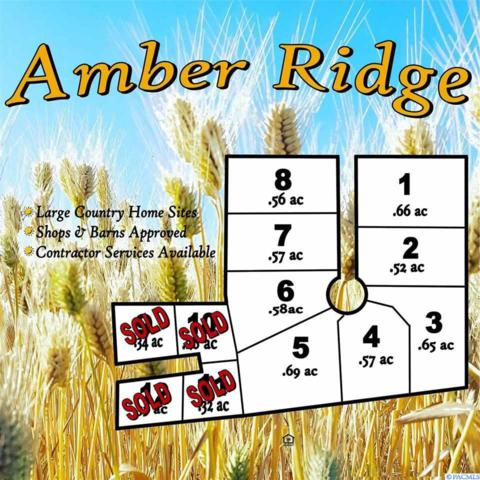 TBD Amber Ridge Rd Lot 5, Palouse, WA 99161 (MLS #229455) :: Community Real Estate Group