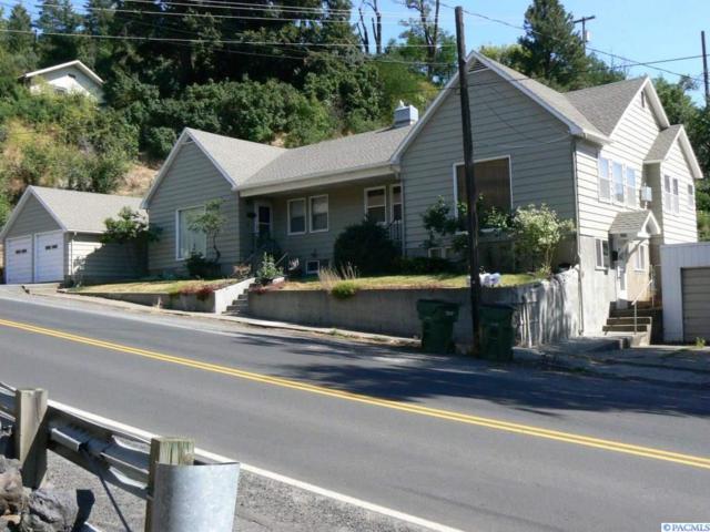 206 E Canyon, Colfax, WA 99111 (MLS #231135) :: Premier Solutions Realty