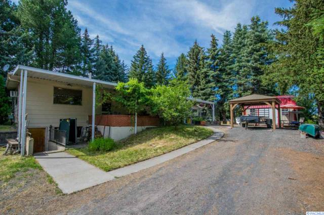 50 NW Terre View Dr., Pullman, WA 99163 (MLS #231506) :: The Lalka Group