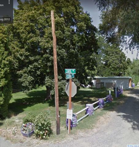 505 Cora Lane, Benton City, WA 99320 (MLS #231730) :: Dallas Green Team