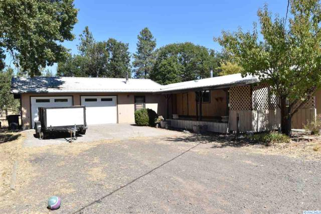 41 Mountain View Ranch Rd, Goldendale, WA 98620 (MLS #232477) :: Premier Solutions Realty