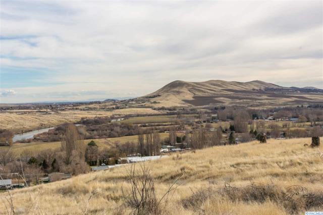 TBD Montana Prnw, Benton City, WA 99320 (MLS #233895) :: The Lalka Group