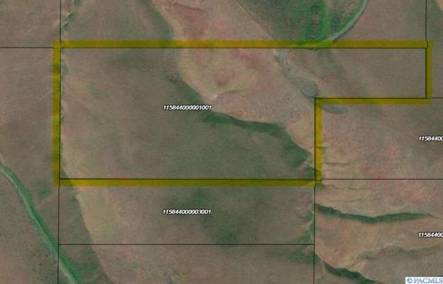 NKA Unknown, Prosser, WA 99350 (MLS #233931) :: The Lalka Group
