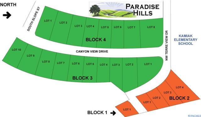 xxx NW Canyon View Drive, Pullman, WA 99163 (MLS #234003) :: Community Real Estate Group
