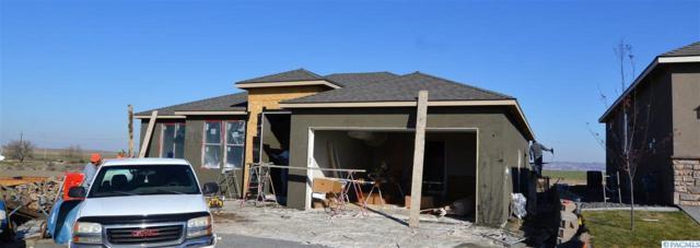 2728 Torrey Pines Way, Richland, WA 99354 (MLS #234080) :: Dallas Green Team