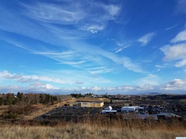 200 SW Prairie Ct, Pullman, WA 99163 (MLS #234424) :: Community Real Estate Group