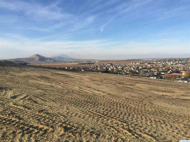 TBD Lot 4 Hershey Lane, West Richland, WA 99353 (MLS #235086) :: Community Real Estate Group
