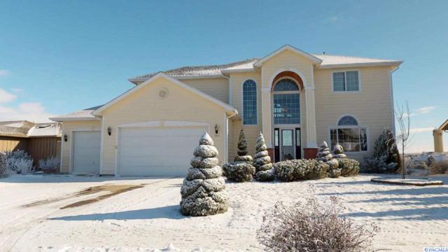 1020 SW Itani Drive, Pullman, WA 99163 (MLS #235284) :: Premier Solutions Realty