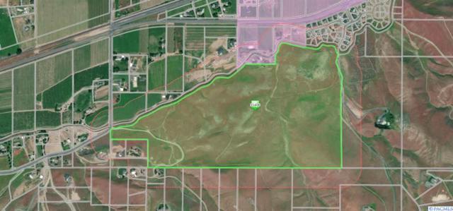 NKA Kelandren Dr., Prosser, WA 99350 (MLS #235390) :: Community Real Estate Group
