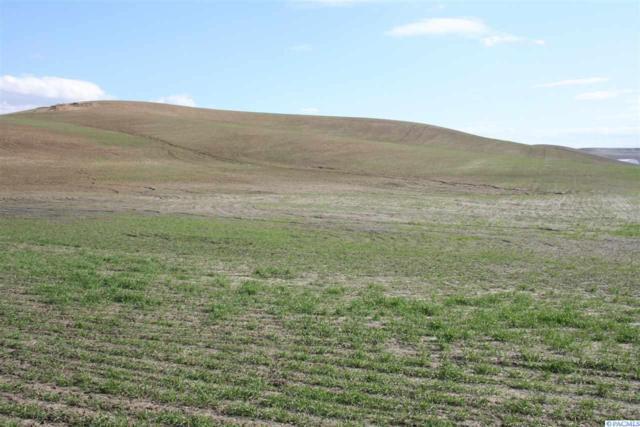 2 Golden Wheat Lane, Pullman, WA 99163 (MLS #236671) :: Community Real Estate Group