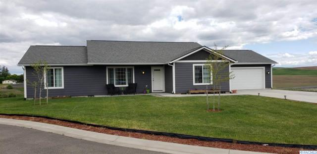 317 Welle Dr, Uniontown, WA 99179 (MLS #237435) :: Dallas Green Team