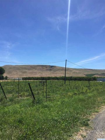 NKA W Old Inland Empire Hwy, Prosser, WA 99350 (MLS #237987) :: Community Real Estate Group