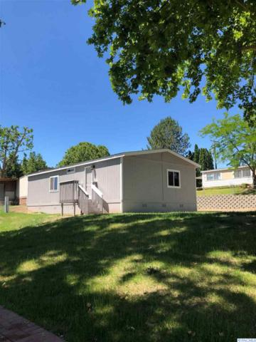 3517 Road 84, Pasco, WA 99301 (MLS #238069) :: Dallas Green Team