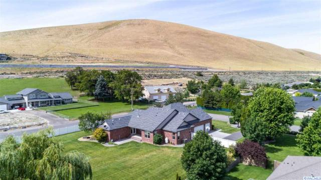 3902 S Highlands Blvd., West Richland, WA 99353 (MLS #238371) :: The Lalka Group