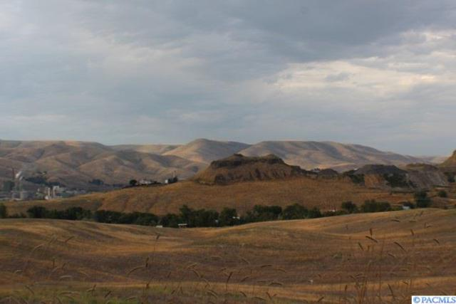 NKA 11th Avenue, Lewiston, ID 83501 (MLS #238813) :: Community Real Estate Group