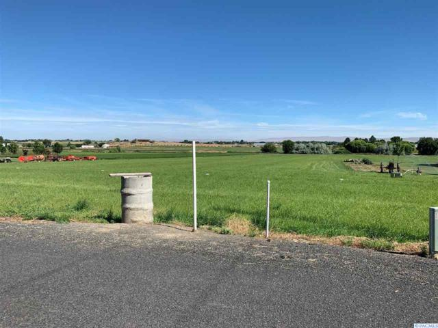 160204 W Richards Road, Prosser, WA 99350 (MLS #238844) :: The Lalka Group