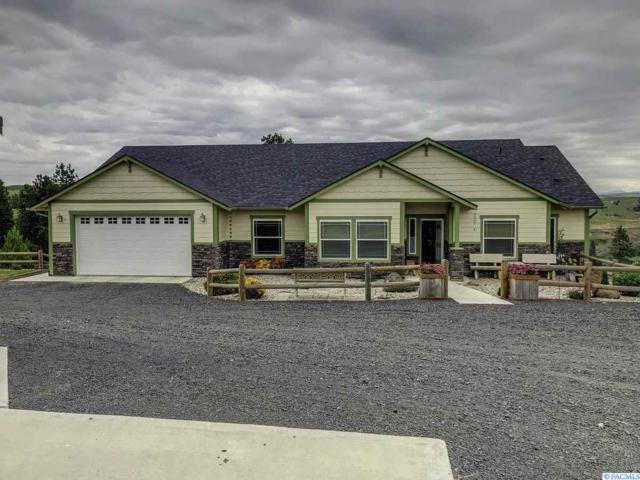 336 Red Tail Ridge Rd, Colfax, WA 99111 (MLS #238911) :: Premier Solutions Realty