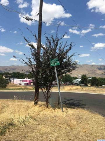 NKA 14th Avenue, Lewiston, ID 83501 (MLS #239066) :: Community Real Estate Group