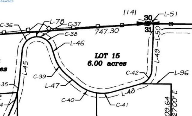 Lot 15 Red Tail Ridge, Colfax, WA 99111 (MLS #243267) :: Beasley Realty