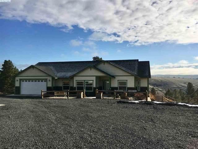 336 Red Tail Ridge Rd, Colfax, WA 99111 (MLS #243511) :: Community Real Estate Group