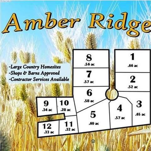 103 Amber Ridge Rd.   (Lot 2), Palouse, WA 99161 (MLS #243651) :: Beasley Realty