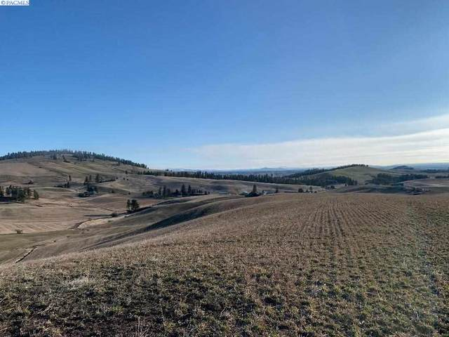 TBD Blaine Road, Moscow, WA 83843 (MLS #244386) :: The Phipps Team