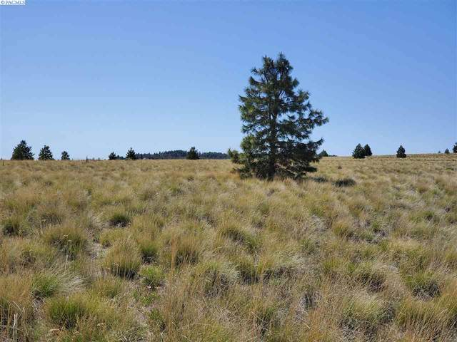 Tbd Middle Road, Bickelton, WA 99322 (MLS #245382) :: Dallas Green Team