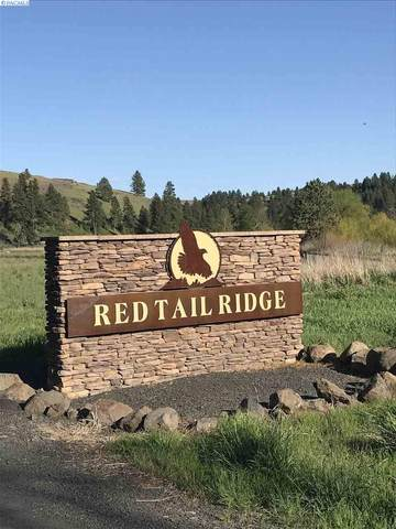 Red Tail Ridge Rd Lot 35, Colfax, WA 99111 (MLS #245387) :: Dallas Green Team