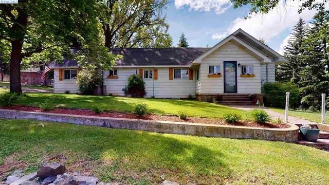 225 S Palouse River Road, Palouse, WA 99161 (MLS #246286) :: Story Real Estate