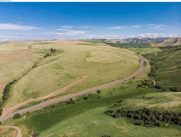 Lot 4 Linville Gulch Estates, Linville Gulch Rd, Pomeroy, WA 99347 (MLS #247292) :: Premier Solutions Realty