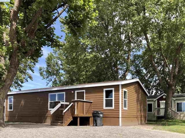3517 Road 84, Pasco, WA 99301 (MLS #247765) :: Cramer Real Estate Group
