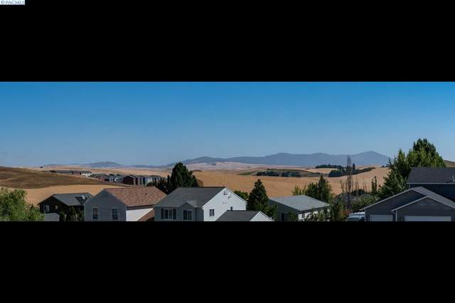 450 NW Terreview Dr, Pullman, WA 99163 (MLS #248219) :: Premier Solutions Realty