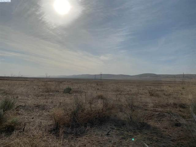 TBD Mabton Bickleton Hwy, Mabton, WA 98935 (MLS #248222) :: Cramer Real Estate Group