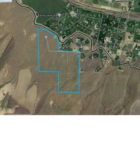 TBD E Homestead Road  (Lot 8), Kennewick, WA 99338 (MLS #248361) :: The Phipps Team