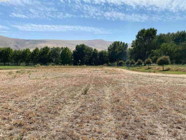 9103 S Moore Lot 2, Prosser, WA 99350 (MLS #248488) :: The Phipps Team