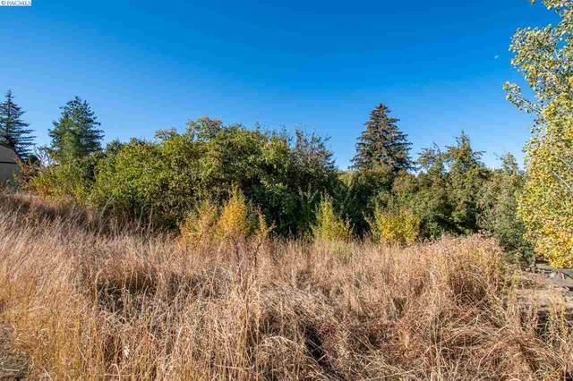 TBD S Union Ave, Uniontown, WA 75056 (MLS #249296) :: Beasley Realty