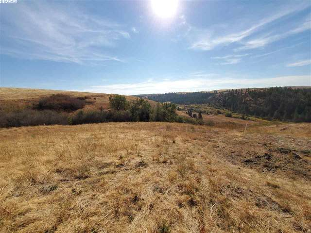 Lot 21 Red Tail Ridge, Colfax, WA 99111 (MLS #249327) :: Beasley Realty