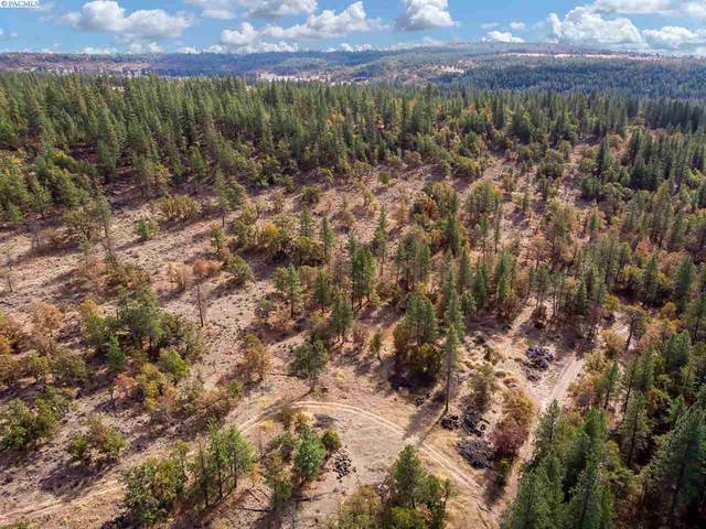 Sr 97 Lot 3E, Goldendale, WA 98620 (MLS #249485) :: Matson Real Estate Co.