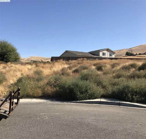 217 SW Mariposa, Prosser, WA 99350 (MLS #250853) :: Matson Real Estate Co.