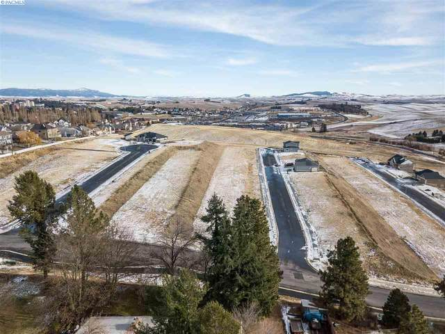 570 SW Wallowa, Pullman, WA 99163 (MLS #251190) :: Premier Solutions Realty