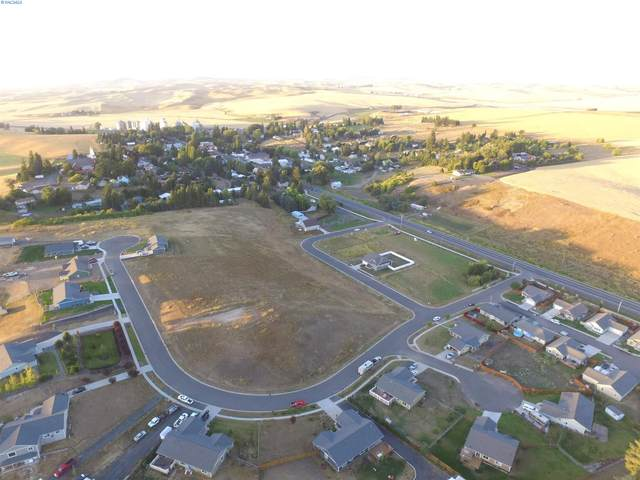 315 Welle Drive, Uniontown, WA 99179 (MLS #251954) :: Columbia Basin Home Group