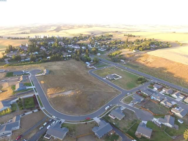 309 Welle Drive, Uniontown, WA 99179 (MLS #251975) :: Matson Real Estate Co.