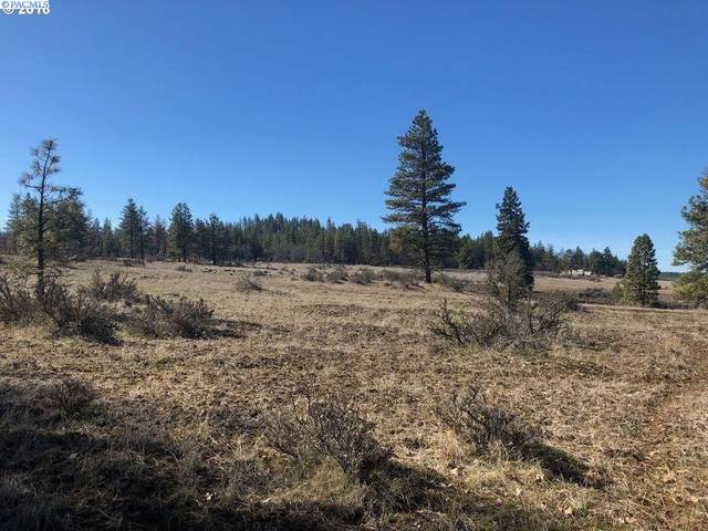 Chambers Rd. Lot 2, Goldendale, WA 98620 (MLS #252042) :: Matson Real Estate Co.