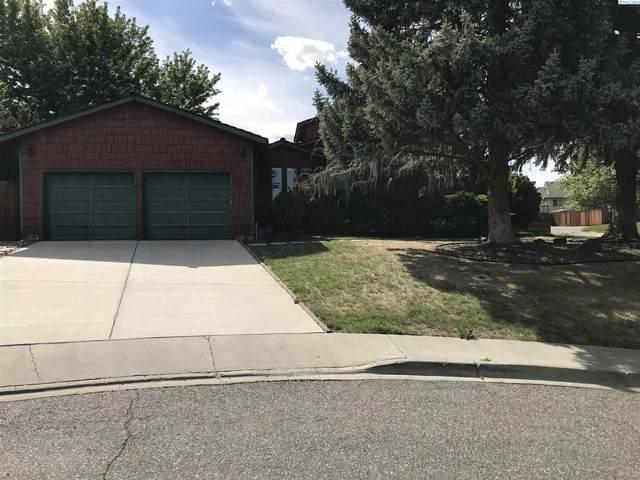 117 Peachtree Ln, Richland, WA 99352 (MLS #253560) :: Columbia Basin Home Group